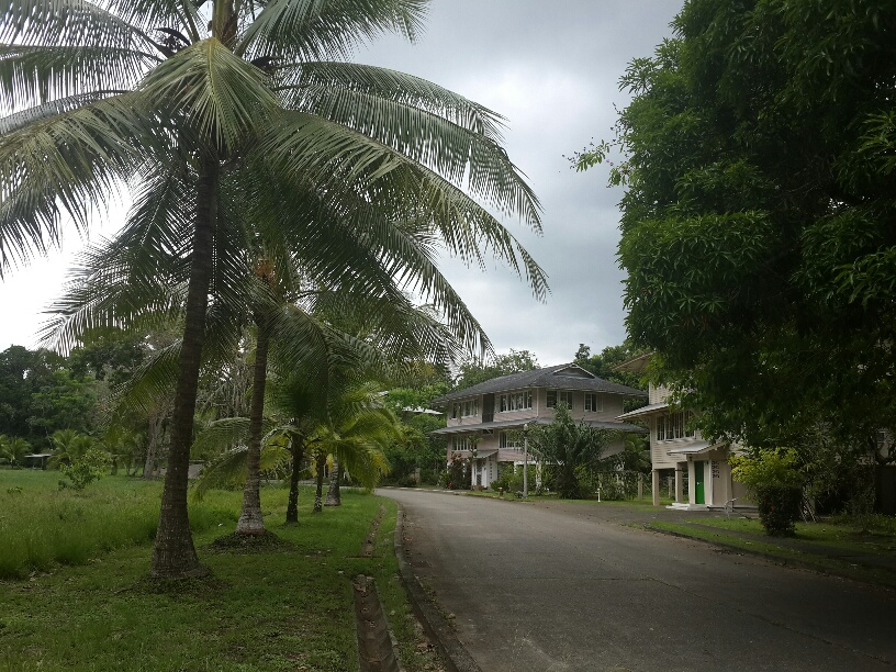 Gamboa house rentals: A great place for visiting scientists who research all that is tropical, and lovers of a tropical paradise. 268 BL Morrow Gamboa Panama ww.spanishpanama.com